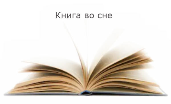 Книга во сне