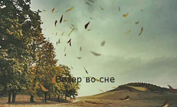 Ветер во сне