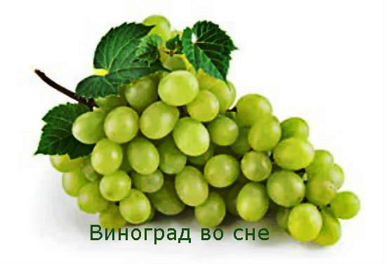 Виноград во сне